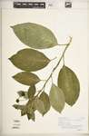 193fed14 11f1 4f19 b6fb 60a084b854b7?file=thumbnail