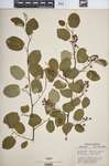 Pc289q646?file=thumbnail